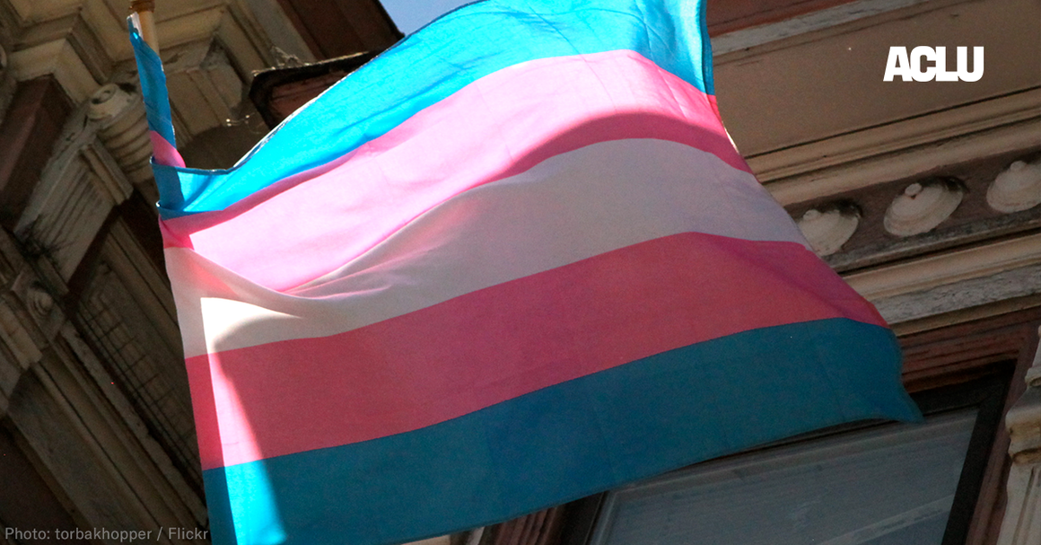 ACLU logo Transflag